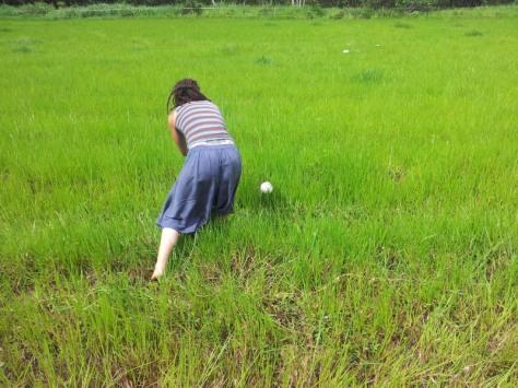 Me picking mushrooms