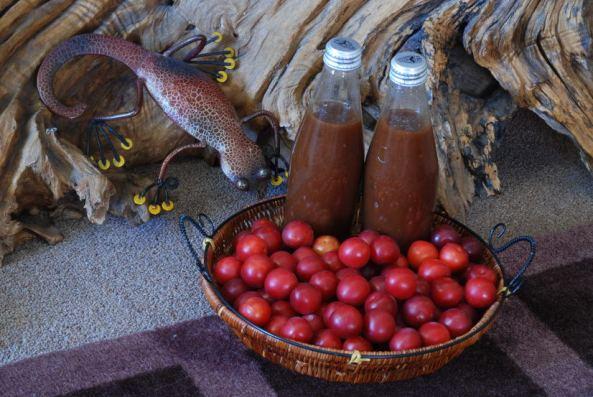 Wild Plum n Tassie Pepper Berry  n Tamarind Hot Sauce